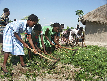 Zambia girls hoeing field together. Kaunga mashi, shangombo district. The area had suffered drought and severe food shortages during the previous 2 years