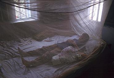 India - health: boy under mosquito net, kerala