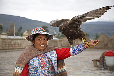 Peru. Woman with eagle, yanque, colca canyon