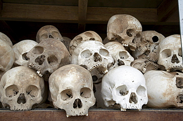 Cambodia the killing fields national memorial, phnom penh. skulls of victims killed by khmer rouge