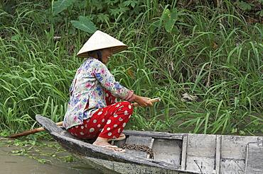 Vietnam scene in vinh long: woman paddling boat on backwaters