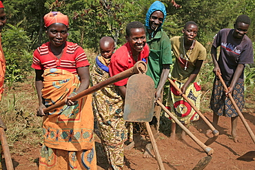 Burundi agakura, a youth agricultural project in gitera. Group of farmers who are associated with agakura doing communal work on farmland.