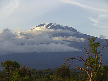 Tanzanian mount kilimanjaro in the clouds, viewed from arusha
