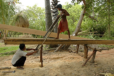 Cambodia sawing planks by hand. Kampong thom