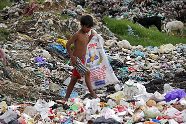 CAMBODIA Boy scavenging for recyclable garbage on rubbish dump of Mean Caeay, Phnom Penh