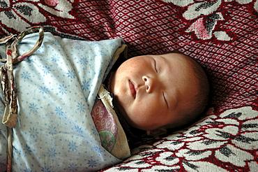 Mongolia baby of ulaan baatar
