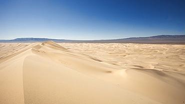 Khongoryn Els Sand dunes in the Gobi Gurvansaikhan National Park in Mongolia, Central Asia, Asia
