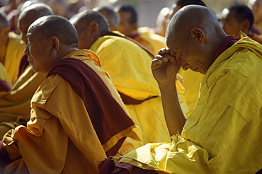 Budhist lamas in prayer, bodhgaya, india. Monks attending kalachakra initiation at mahaboudhi temple in bodhgaya, india. mahabodhi temple marks site of buddha's enlightment twenty-five hundred years. centuries have made pilgrimages across himalayas to sites connected with life of historical buddha. From a tantric perspective, pilgrimage is more than paying homage at sacred sites. Rather, it is that activities performed at these places become a memory of place itself. By attuning oneself through ritual meditation to this timeless presence, similar experiences be evoked