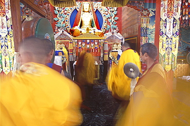 Nepal. Triten norbutse. Rigorous debate is a critical activity lamas at triten norbutse monastery. Through this method we begin to know meaning of texts with greater precision