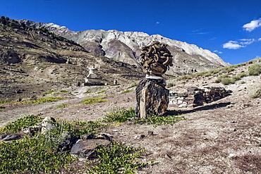 Shrine with Argyle Sheep horns and Blue sheep horns, lower Nyerak village, Ladakh, India, Himalayas, Asia