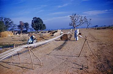 Processing cotton in a village, Punjab, Pakistan, Asia