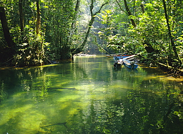 Longboats moored in creek amid rain forest, while tourists visit Clearwater Cave, Mulu National Park, Sarawak, island of Borneo, Malaysia