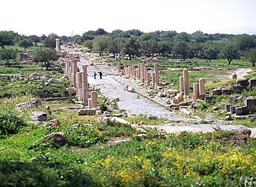 Looking west along Decumanus Maximus, main street of Umm Qais (ancient Gadara), a city of the Roman Decapolis, north of Irbid, Jordan, Middle East