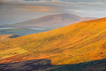 Dingle Peninsula at sunrise, County Kerry, Munster, Republic of Ireland, Europe