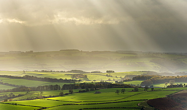 Sun illuminating fields in rural landscape in November, near Baslow, seen from Baslow Edge, Peak District, Derbyshire, England, United Kingdom, Europe