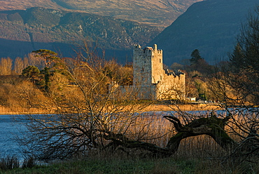 Ross Castle, Killarney National Park, County Kerry, Munster, Republic of Ireland, Europe