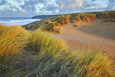 Sand dunes at Holywell, near Newquay, Cornwall, England, United Kingdom, Europe