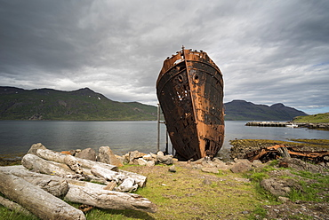 Abandoned boat, Djupavik, Strandir Coast, Westfjords, Iceland, Polar Regions