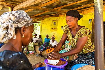 Two ladies trading at Baba Peter Keita's market, Madakiya, Nigeria, West Africa, Africa