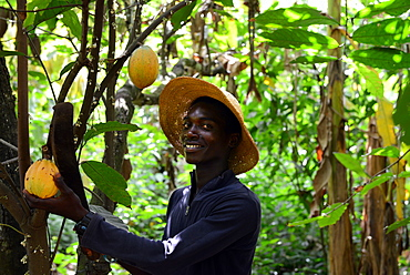 Luliana, child of a cocoa farmer, happy due to VSO present in Ghana, West Africa, Africa