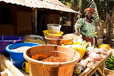 Naomi Mamman, chairman of Chena Bikun Women Farmers Co-operative, Madakiya, Nigeria, West Africa, Africa