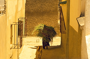 Man carrying heavy load through the backstreets of Meknes, Morocco, North Africa, Africa