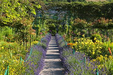 Monet's Garden, Giverny, Eure, France, Europe