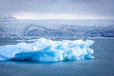 Icebergs floating in Glacier Lagoon beneath Breidamerkurjokull glacier, Jokulsarlon, Vatnajokull, Iceland, Polar Regions