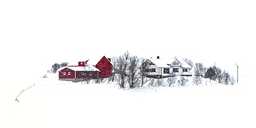 Lofoten village on a snowy winter's day, Lofoten, Nordland, Arctic, Norway, Europe