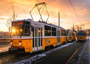 Budapest tram at sunrise, Budapest, Hungary, Europe