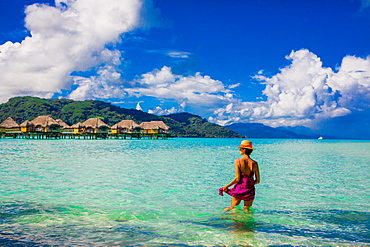 Woman wading in water, Le Taha'a Resort, Tahiti, French Polynesia, South Pacific, Pacific