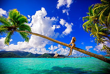 Girl sitting on palm tree in front of overwater bungalows, Le Taha'a Resort, Tahiti, French Polynesia, South Pacific, Pacific