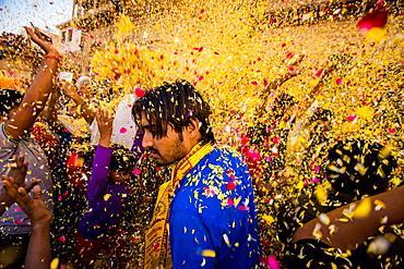 Crowd throwing flower petals during the Flower Holi Festival, Vrindavan, Uttar Pradesh, India, Asia