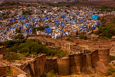 The palace walls of Mehrangarh Fort towering over the blue rooftops in Jodhpur, the Blue City, Rajasthan, India, Asia