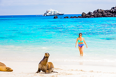 Hanging out with wildlife on Floreana Island, Galapagos Islands, Ecuador, South America