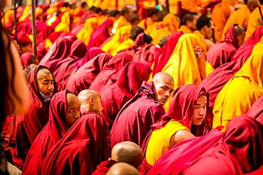 Buddhist Monks praying around temple at Bouddha (Bodhnath), Kathmandu, Nepal, Asia