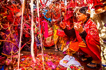 Woman praying at the Holi Festival, Durbar Square, Kathmandu, Nepal, Asia