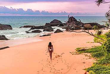 Model strolling on the beach before sunset at Kumu Beach, Sri Lanka, Asia