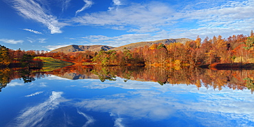 Autumn colour reflected in the still waters of Tarn Hows in the Lake District National Park, Cumbria, England, United Kingdom, Europe