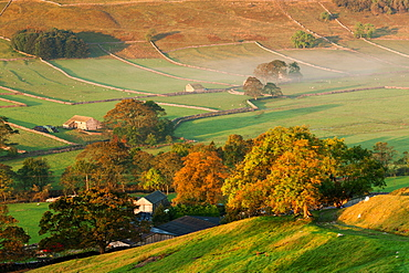 A thin veil of mist lies among the autumn coloured trees and dry stone walls in the Littondale valley, Yorkshire Dales, Yorkshire, England, United Kingdom, Europe