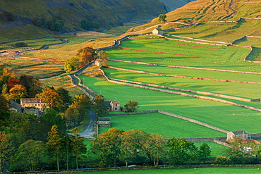 Early morning light on the dry stone walls and fields beside the Yorkshire Dales village of Arncliffe in autumn, North Yorkshire, Yorkshire, England, United Kingdom, Europe
