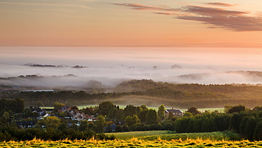 Looking over Delamere village from Eddisbury Hill on an autumn morning to a blanket of mist and fog lying on the Cheshire plain, Cheshire, England, United Kingdom, Europe