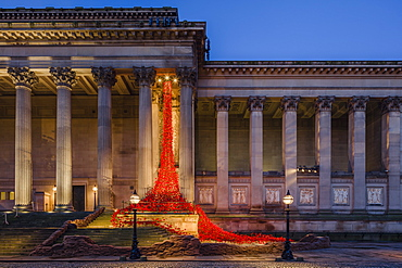 The Poppies Weeping Window sculpture cascading down the St. George's Hall building in Liverpool, Merseyside, England, United Kingdom, Europe
