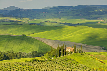 A Tuscan villa perched on a hill in the early evening light of the Val d'Orcia, UNESCO World Heritage Site, Tuscany, Italy, Europe