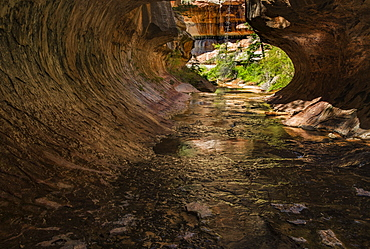 Exiting the Subway Zion National Park, Utah, United States of America, North America