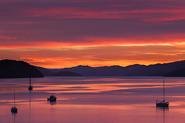 Dawn over the calm waters of Queen Charlotte Sound, South Island, New Zealand, Pacific