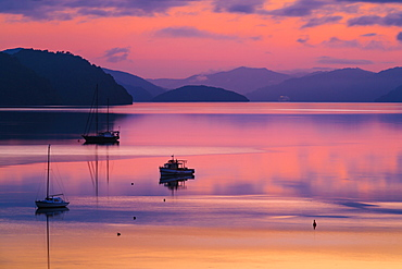 The peaceful and tranquil waters of Queen Charlotte Sound at dawn, South Island, New Zealand, Pacific