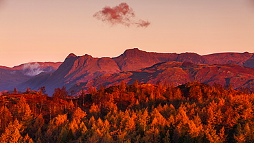 The Langdale Pikes lit in the golden glow of dawn light on an autumn morning in the Lake District National Park, Cumbria, England, United Kingdom, Europe