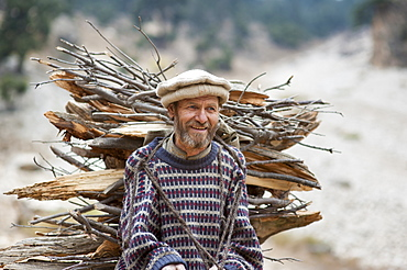 Collecting firewood, North West Frontier Province, Pakistan, Asia