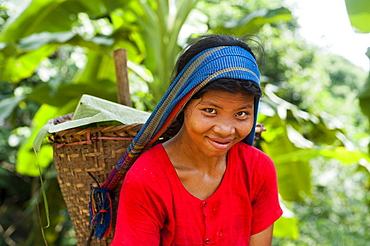 A Chakma girl in the Rangamati area in Bangladesh collects banana flowers which will be used to make curry, Bangladesh, Asia